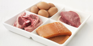 All About Protein Requirements